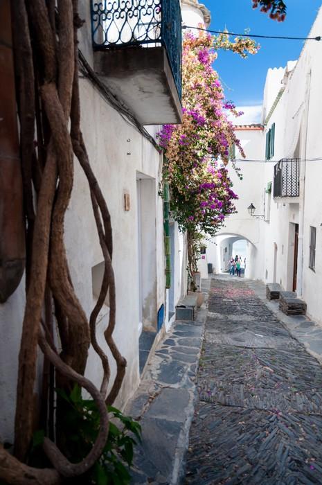 Vinylová Tapeta Ulice rostliny a oblouky uvnitř města Cadaques - Evropa