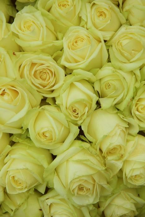 Vinylová Tapeta Žluté růže ve svatební uspořádání - Slavnosti