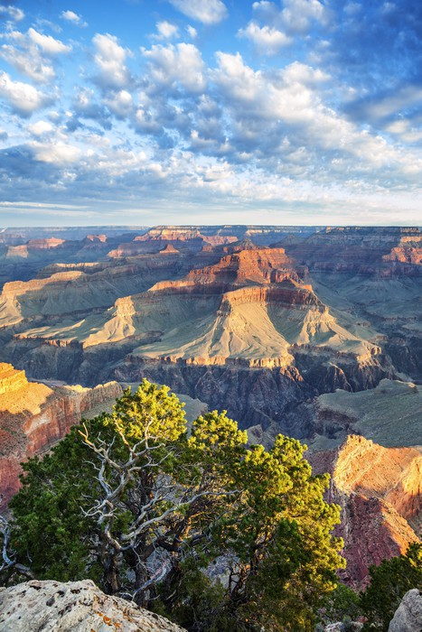 Vinylová Tapeta Grand Canyon s ranním světle - Amerika