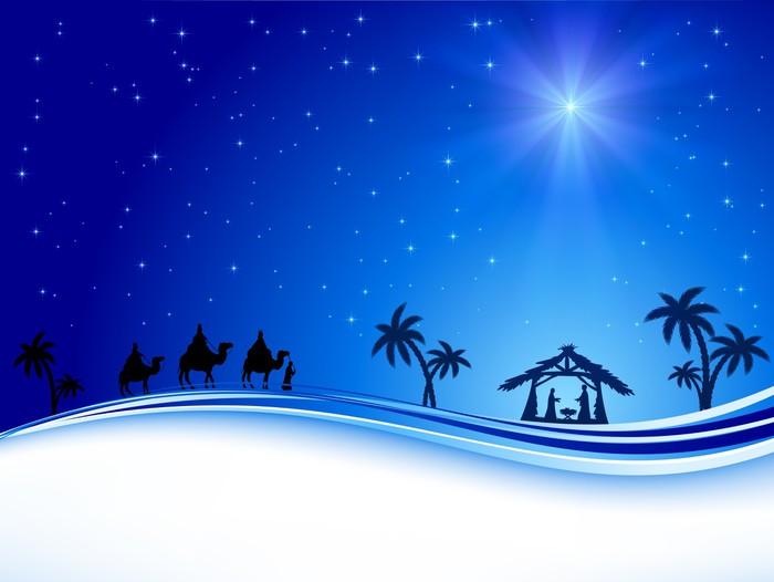 Vinylová fototapeta Vánoční hvězda na modré obloze - Vinylová fototapeta