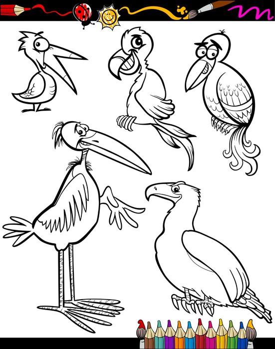 Vinilo Pixerstick Las aves de dibujos animados para colorear libro ...