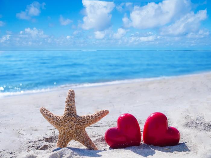 Vinylová Tapeta Hvězdice se srdcem v blízkosti oceánu - Mezinárodní svátky