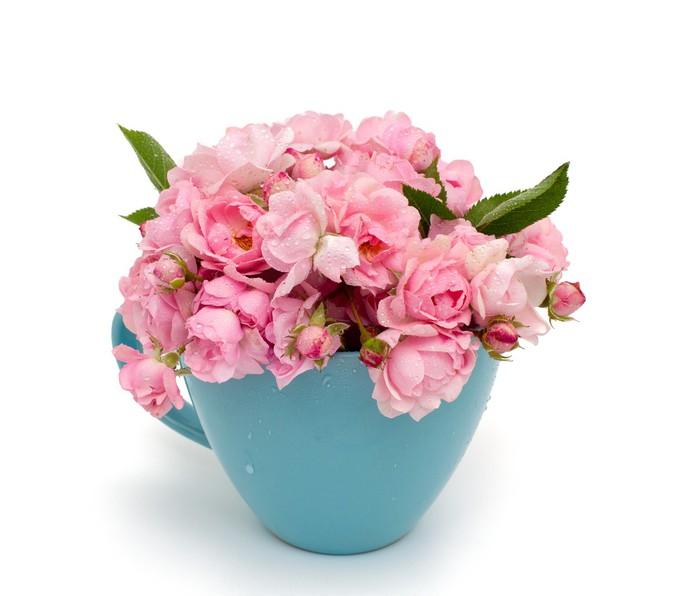 Vinylová Tapeta Modrý šálek plný malých růžových růží přes bílý - Květiny