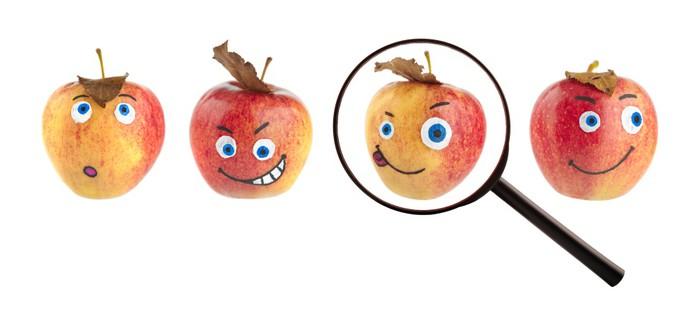 Vinylová fototapeta Hledání koncept s jablky. - Vinylová fototapeta