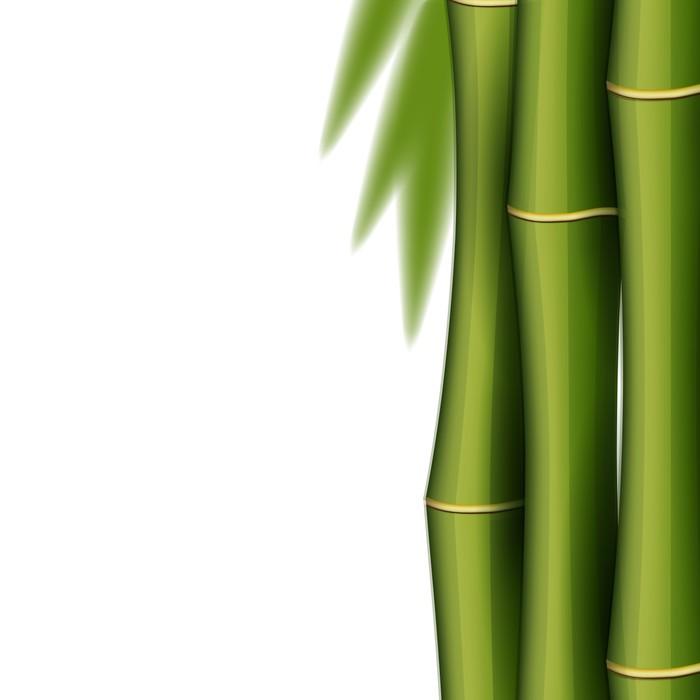 Vinylová Tapeta Design Bamboo šablony - Životní styl, péče o tělo a krása