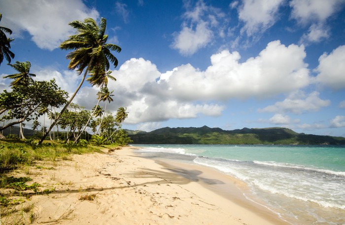 Vinylová Tapeta Tropické pláže (Playa Rincon / Samana) - Voda
