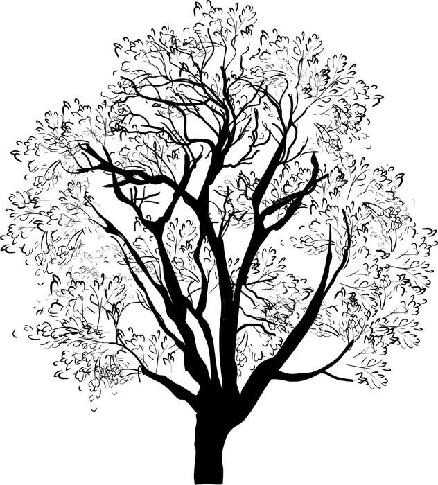 Cuadro En Lienzo árbol De Dibujo Negro Aislado En Blanco Pixers
