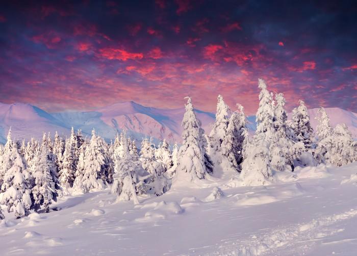 Vinylová Tapeta Fantastické zimní krajina v horách - Roční období