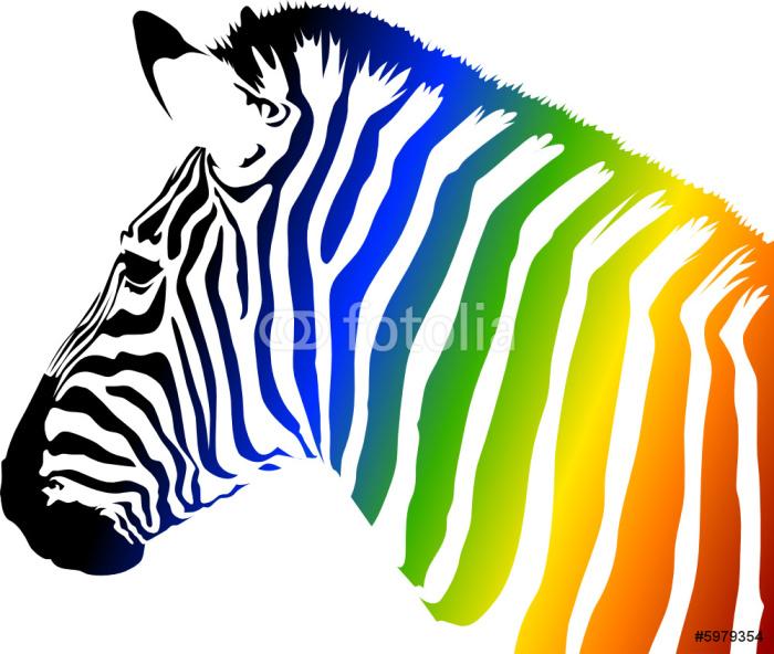 Papier Peint Vinyle Zebra Couleur - Animaux