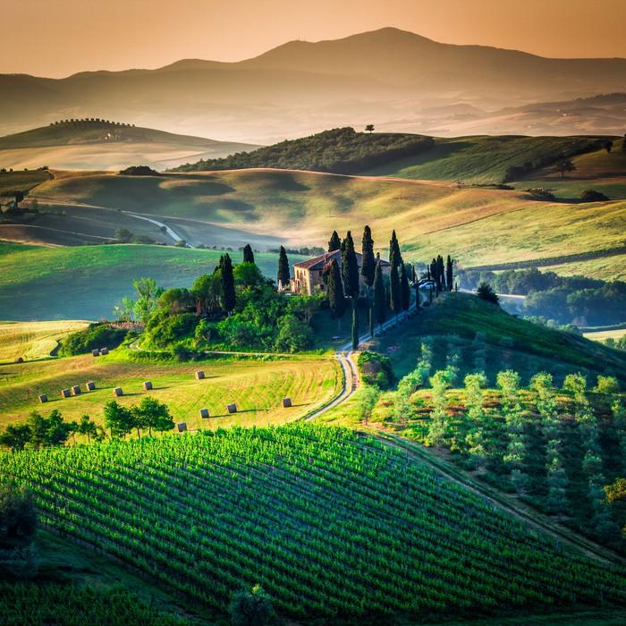 Fototapeta Winylowa Tuscan country - Tematy