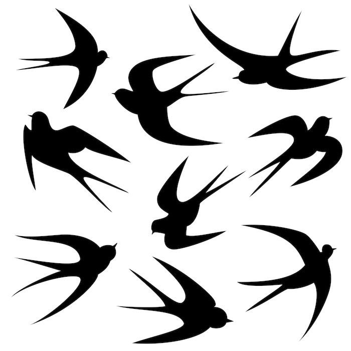 fototapete schwalben tattoo vorlage vektor silhouette pixers wir leben um zu ver ndern. Black Bedroom Furniture Sets. Home Design Ideas
