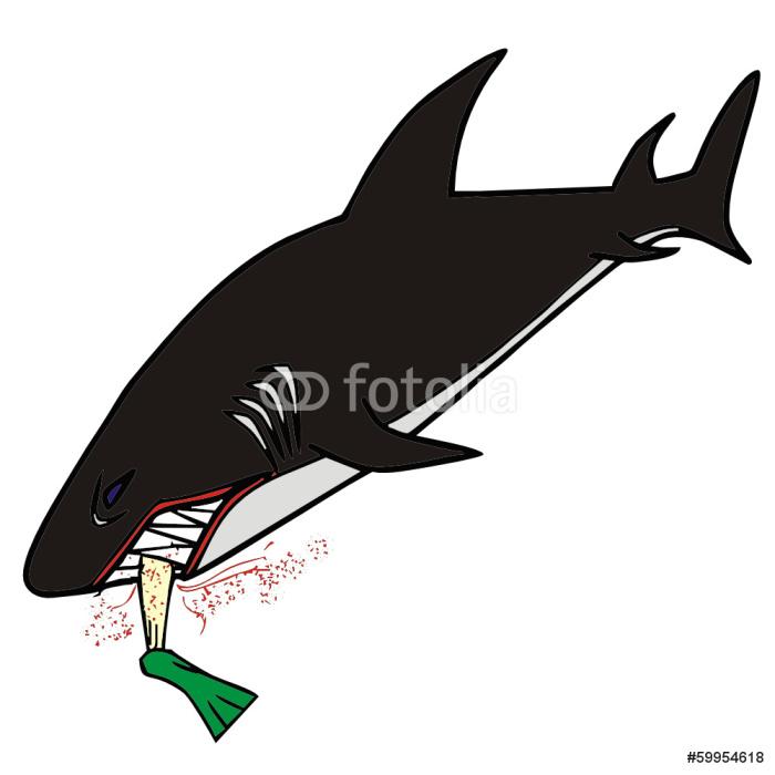 Vinylová Tapeta Vektorové kreslení žraloka - Nálepka na stěny