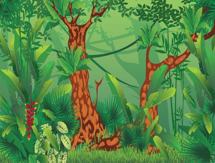Carta Da Parati Foresta Tropicale : Carta da parati foresta tropicale esotico u2022 pixers® viviamo per il