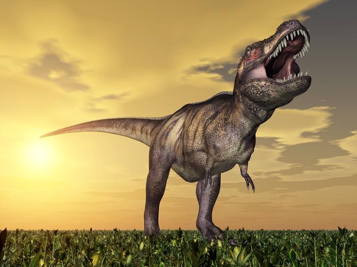 Vinylová Tapeta Tyrannosaurus rex - Témata