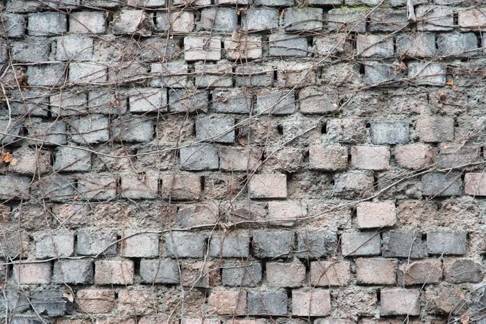 Vinylová Tapeta Staré cihlové zdi z šedé a růžové - Pozadí