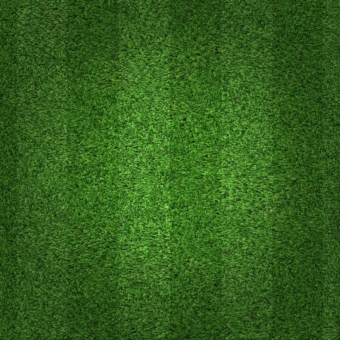 green grass soccer field background poster green i71 green