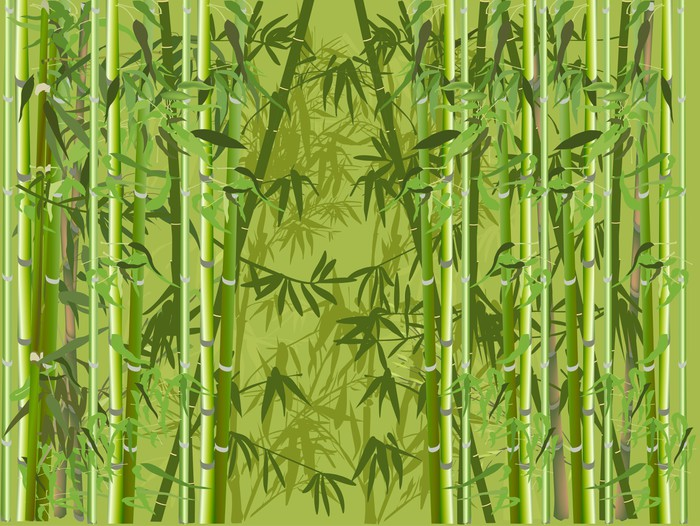 aufkleber gr ne farbe bambuswald pixers wir leben um zu ver ndern. Black Bedroom Furniture Sets. Home Design Ideas