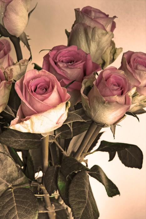 Vinylová Tapeta Staré Roses - Témata