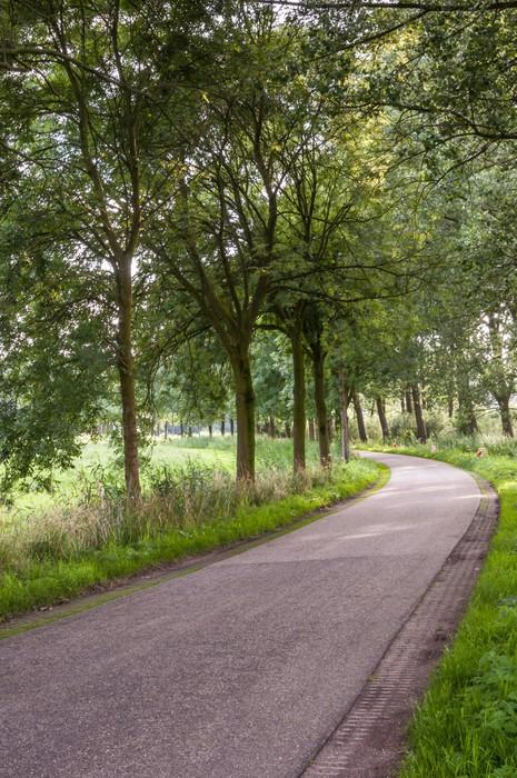 Vinylová Tapeta Zakřivené země silnici v Nizozemsku - Roční období