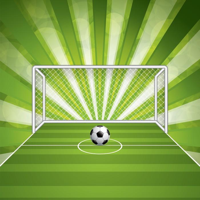 Fototapet Fotbollsmål och boll • Pixers® - Vi lever för förändring aeb23b4179c7e