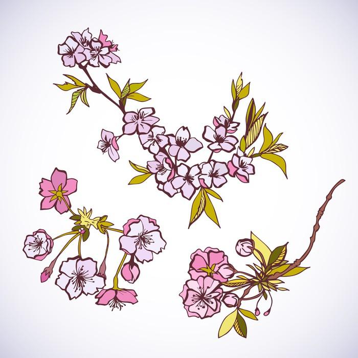 Vinylová Tapeta Kvetoucí sakury ozdobné prvky - Stromy