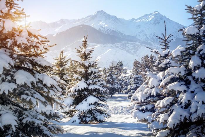Carta da parati paesaggio di montagna inverno pixers for Carta da parati per casa in montagna