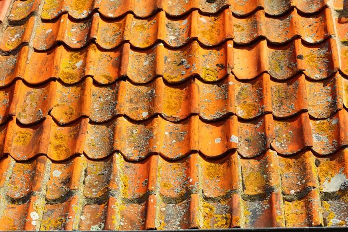 Fotobehang oude tegels rode dak als achtergrond u pixers we