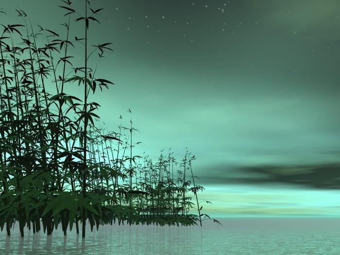 Fotobehang zen natuur 3d render u2022 pixers® we leven om te veranderen