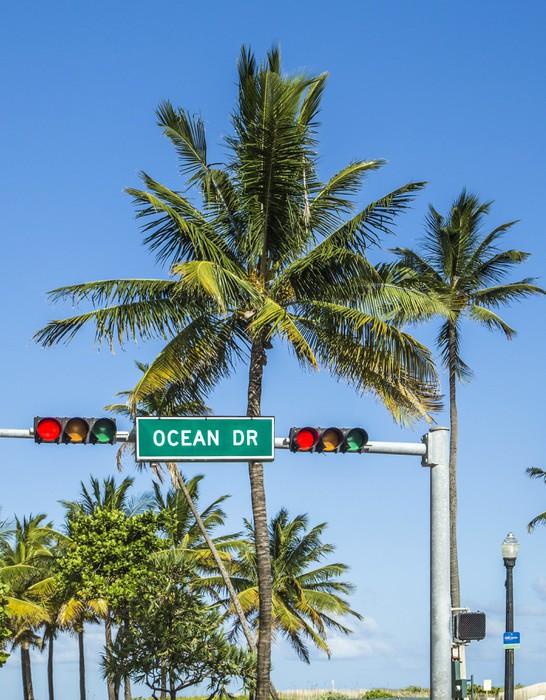 Vinylová Tapeta Ocean Drive znamení v jižní pláže s palmami - Amerika