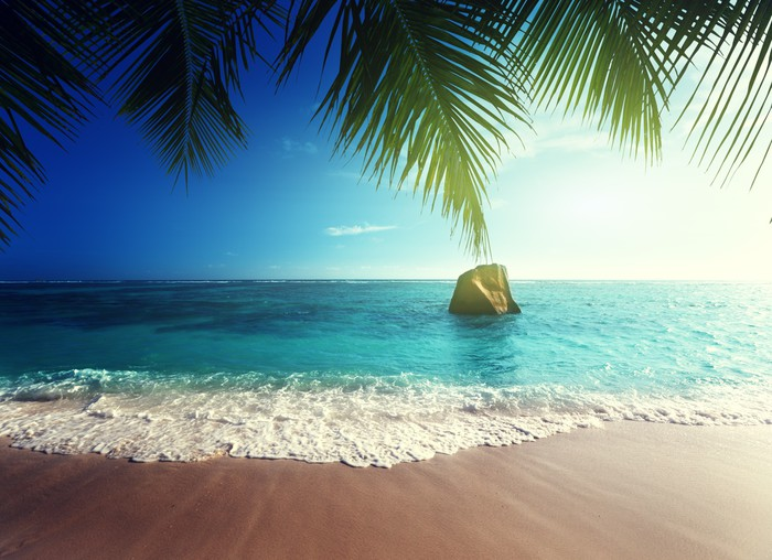 Vinylová Tapeta Západ slunce na pláži Seychely - Palmy