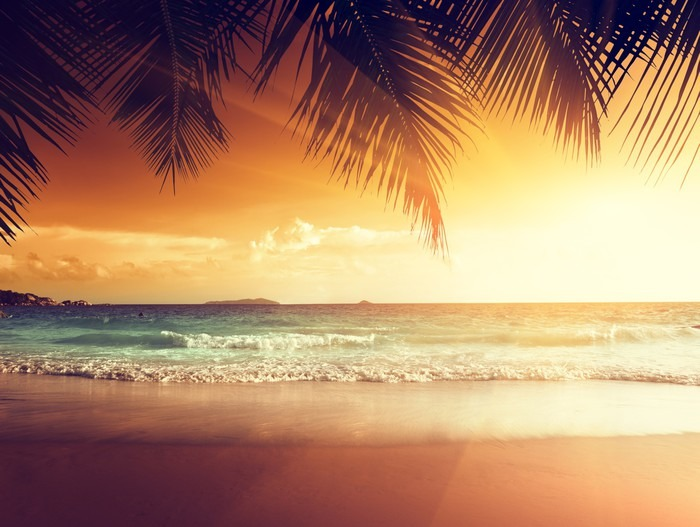 Sunset on the beach of caribbean sea wall mural pixers for Beach sunset mural