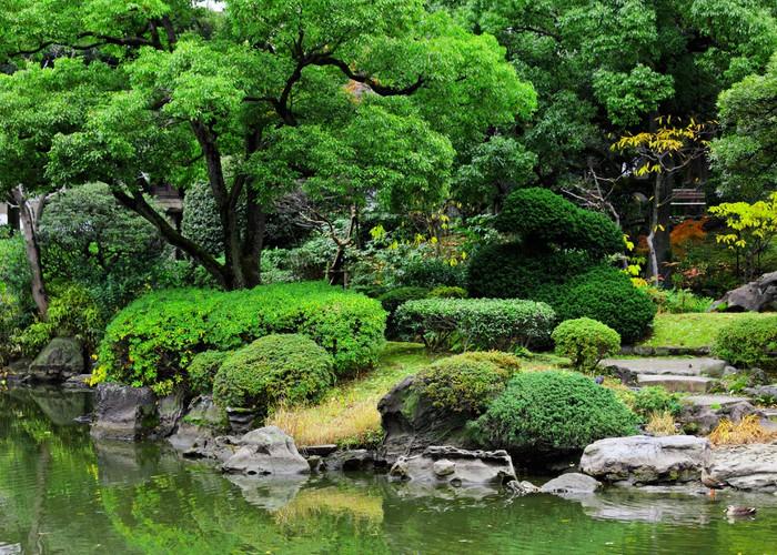 papier peint beau jardin au japon pixers nous vivons pour changer. Black Bedroom Furniture Sets. Home Design Ideas