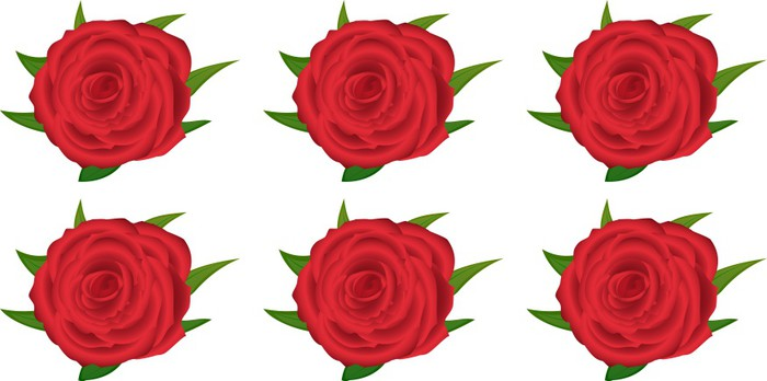 Wallpaper Pattern With Of Red Roses On White Background Vinyl Wall Mural