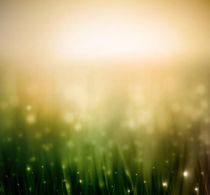 Vinylová Tapeta Souvislosti s trávou - Roční období