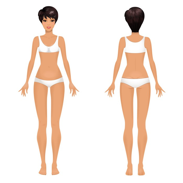 Female Body Template Front And Back Vinyl Wall Mural