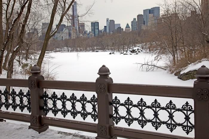 Vinylová Tapeta Central Park - Město