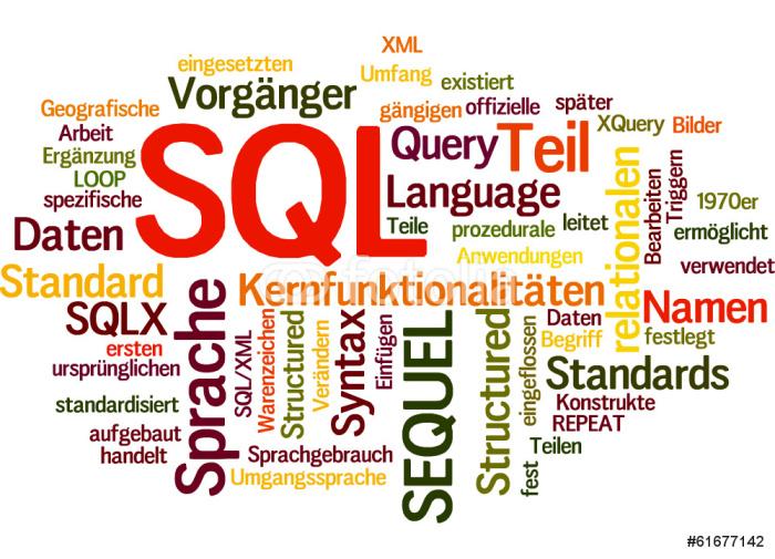 Vinylová Tapeta SQL (databáze, školení, data) - Počítače