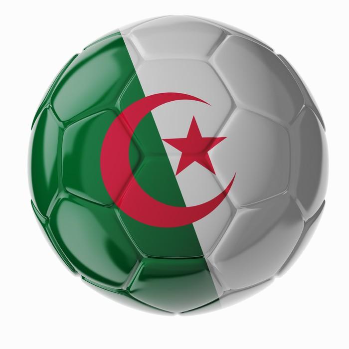 Flag of algeria pixerstick sticker africa