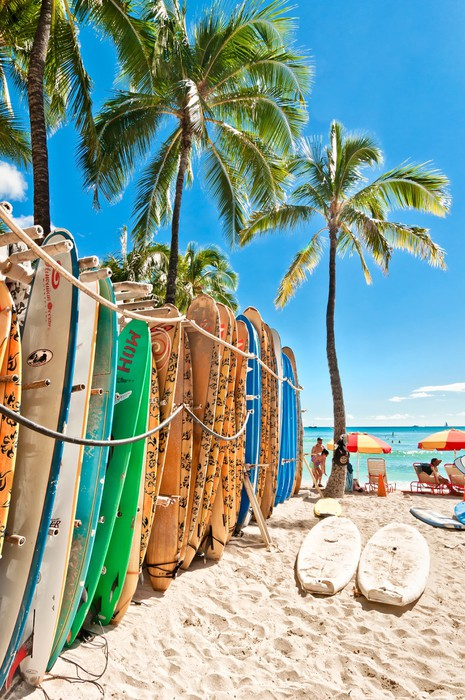 Surfboards In The Rack At Waikiki Beach Wall Mural