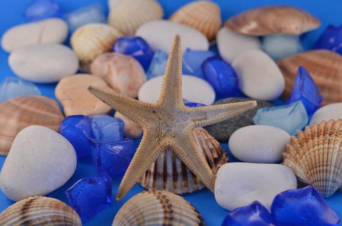 Vinylová Tapeta Sea Star - Vodní a mořský život