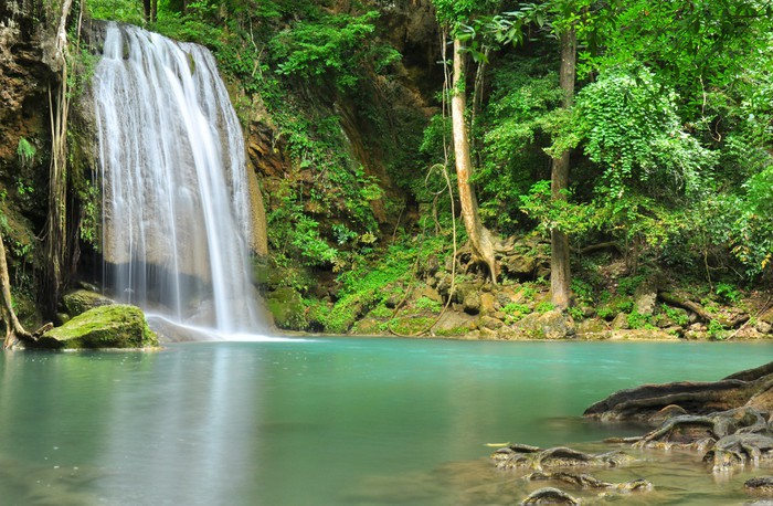 Green Waterfall In Tropical Rainforest Wall Mural Pixers