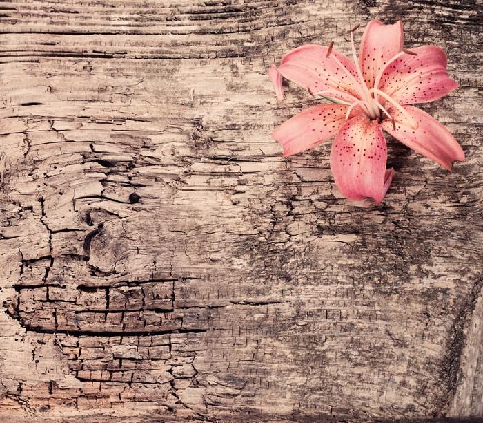 Vinylová Tapeta Lily na dřevěné pozadí - Struktury