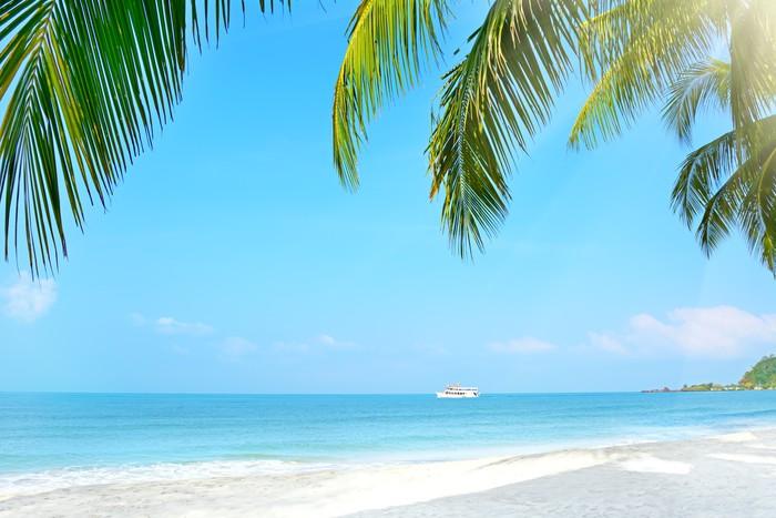 fototapete strand mit palmen koh chang thailand pixers. Black Bedroom Furniture Sets. Home Design Ideas