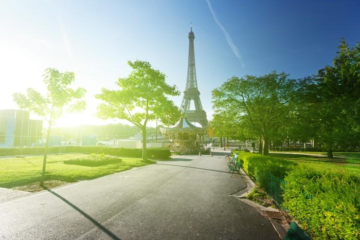Papel Pintado Estándar Mañana de sol y la Torre Eiffel, París, Francia - Ciudades europeas
