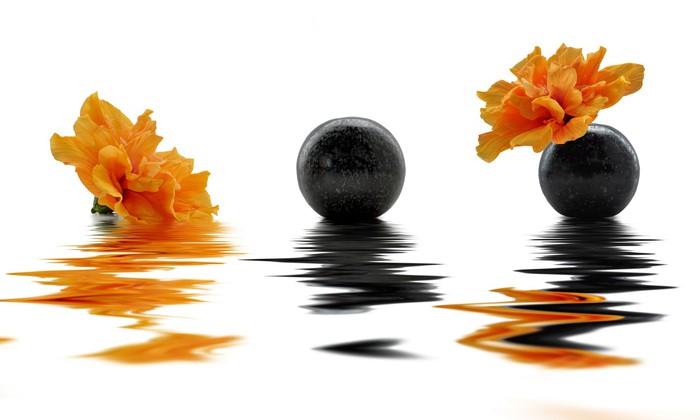 Vinylová Tapeta Oranžové květy ibišku, úvahy - Květiny