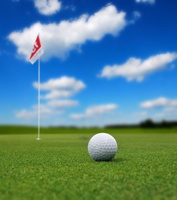 sticker une balle de golf en face du drapeau pixers. Black Bedroom Furniture Sets. Home Design Ideas
