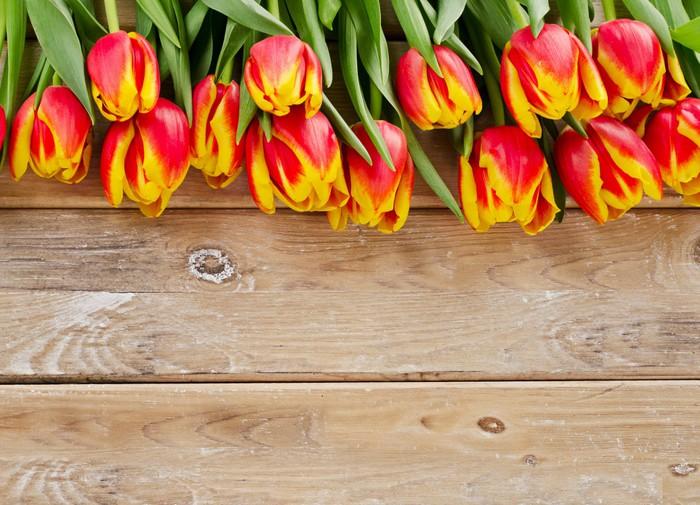 Vinylová Tapeta Kytice z čerstvých tulipánů - Květiny