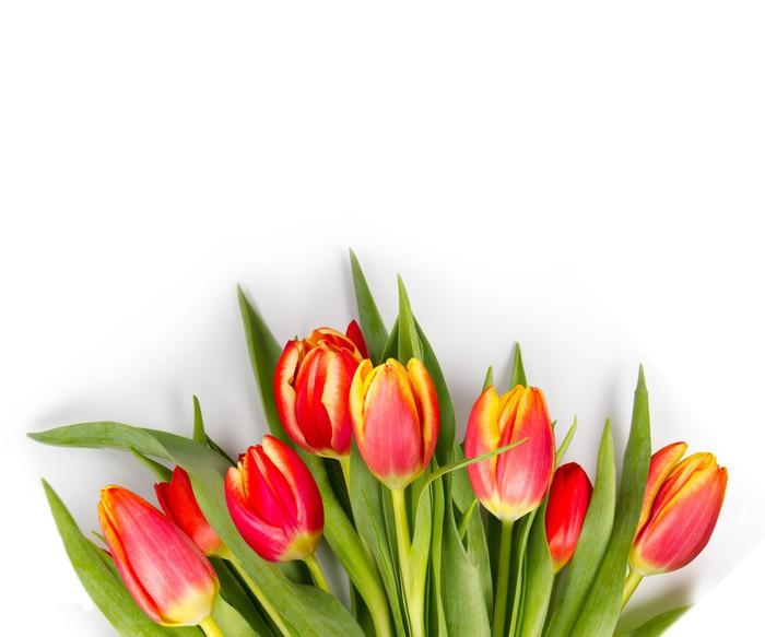 Vinylová Tapeta Tulipán kytice - Mezinárodní svátky
