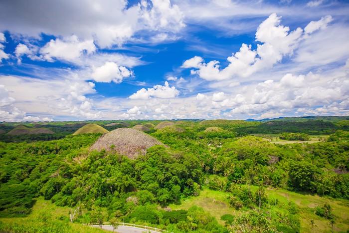 Vinylová Tapeta Zelené neobvyklé Chocolate Hills v Bohol, Filipíny - Prvky podnikání