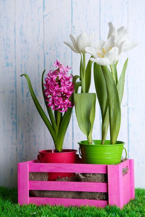 Vinylová Tapeta Krásné tulipány a hyacint květiny - Květiny